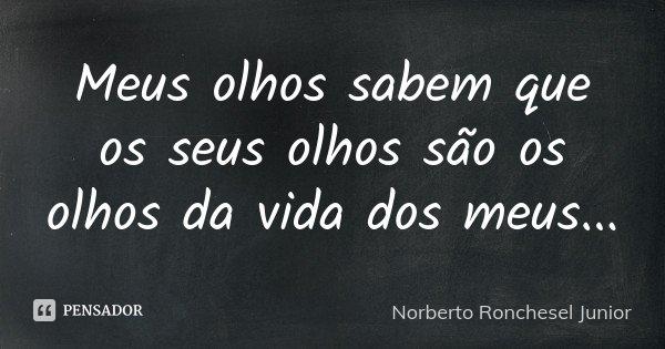 Meus olhos sabem que os seus olhos são os olhos da vida dos meus...... Frase de Norberto Ronchesel Junior.