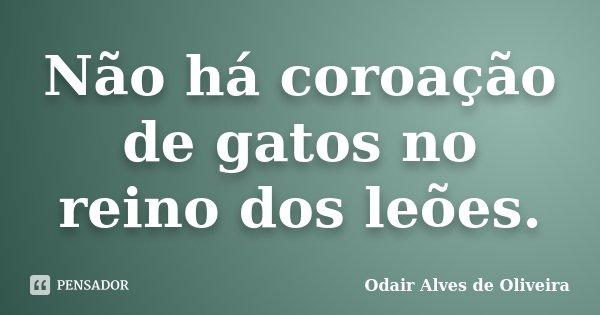 Não há coroação de gatos no reino dos leões.... Frase de Odair Alves de Oliveira.