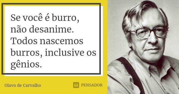 Se você é burro, não desanime. Todos nascemos burros, inclusive os gênios.... Frase de Olavo de Carvalho.