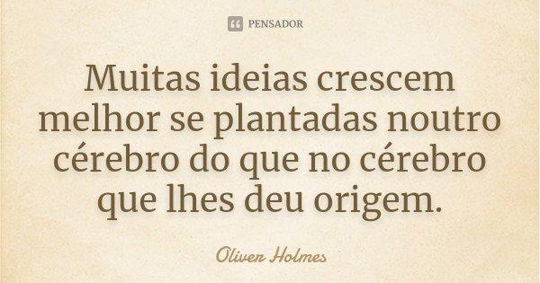 Muitas ideias crescem melhor se plantadas noutro cérebro do que no cérebro que lhes deu origem.... Frase de Oliver Holmes.