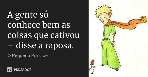 A gente só conhece bem as coisas que cativou – disse a raposa.... Frase de O pequeno príncipe.