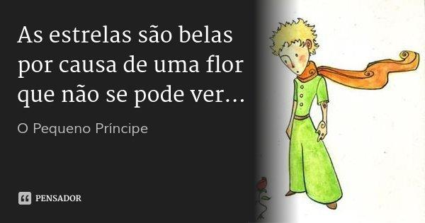 As estrelas são belas por causa de uma flor que não se pode ver...... Frase de O pequeno Príncipe.