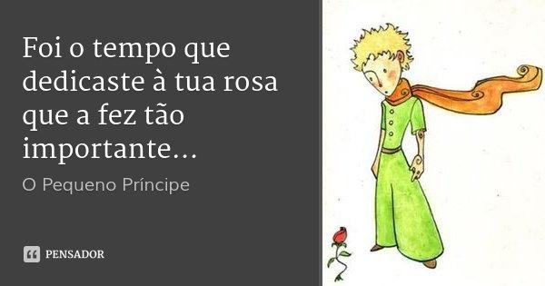Foi o tempo que dedicaste à tua rosa que a fez tão importante...... Frase de O Pequeno Príncipe.