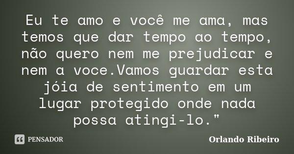 Eu te amo e você me ama, mas temos que dar tempo ao tempo, não quero nem me prejudicar e nem a voce.Vamos guardar esta jóia de sentimento em um lugar protegido ... Frase de Orlando Ribeiro.