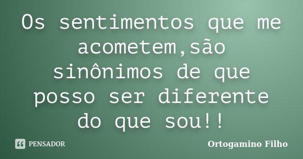 Os sentimentos que me acometem,são sinônimos de que posso ser diferente do que sou!!... Frase de Ortogamino Filho.