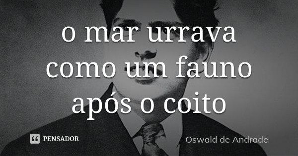 o mar urrava como um fauno após o coito... Frase de Oswald de Andrade.