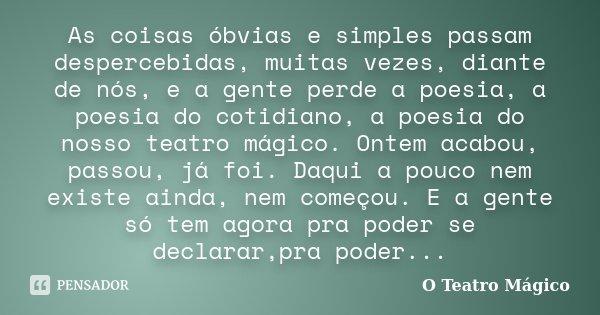 As coisas óbvias e simples passam despercebidas, muitas vezes, diante de nós, e a gente perde a poesia, a poesia do cotidiano, a poesia do nosso teatro mágico. ... Frase de O Teatro Mágico.
