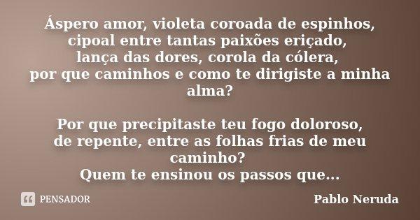 Áspero amor, violeta coroada de espinhos, cipoal entre tantas paixões eriçado, lança das dores, corola da cólera, por que caminhos e como te dirigiste a minha a... Frase de Pablo Neruda.