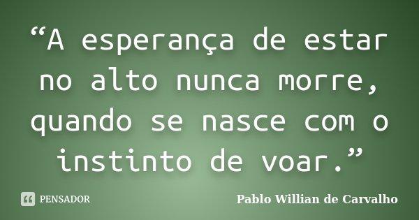 """""""A esperança de estar no alto nunca morre, quando se nasce com o instinto de voar.""""... Frase de Pablo Willian de Carvalho."""