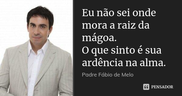 Eu Não Sei Onde Mora A Raiz Da Mágoa Padre Fábio De Melo
