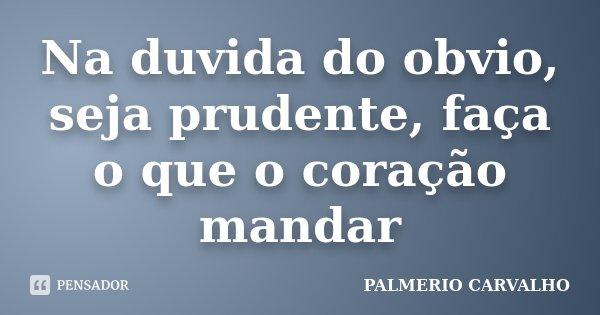Na duvida do obvio, seja prudente, faça o que o coração mandar... Frase de PALMERIO CARVALHO.