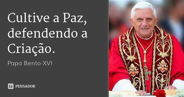 Cultive a Paz, defendendo a Criação.... Frase de Papa Bento XVI.