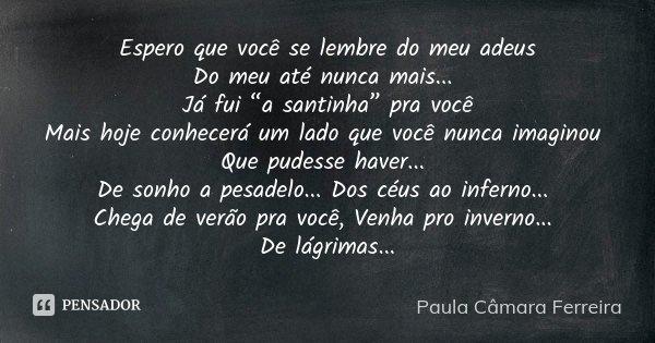 """Espero que você se lembre do meu adeus Do meu até nunca mais... Já fui """"a santinha"""" pra você Mais hoje conhecerá um lado que você nunca imaginou Que pudesse hav... Frase de Paula Câmara Ferreira."""