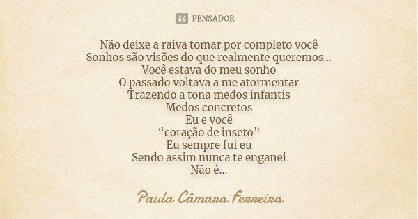 Não deixe a raiva tomar por completo você Sonhos são visões do que realmente queremos... Você estava do meu sonho O passado voltava a me atormentar Trazendo a t... Frase de Paula Câmara Ferreira.