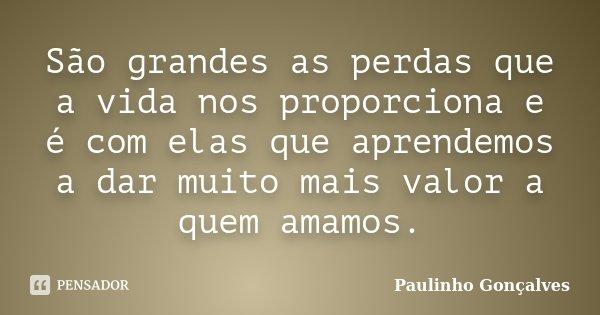 São grandes as perdas que a vida nos proporciona e é com elas que aprendemos a dar muito mais valor a quem amamos.... Frase de Paulinho Gonçalves.
