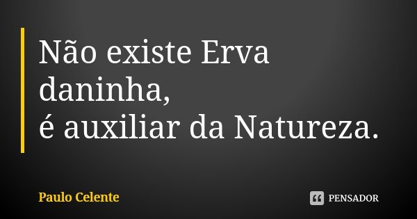 Não existe Erva daninha, é auxiliar da Natureza.... Frase de Paulo Celente.