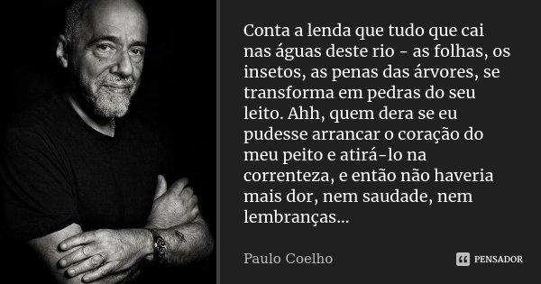 Conta a lenda que tudo que cai nas águas deste rio - as folhas, os insetos, as penas das árvores, se transforma em pedras do seu leito, Ahh, quem dera se eu pud... Frase de Paulo Coelho.