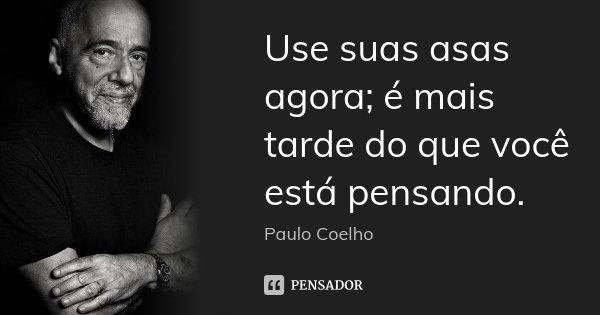 Use suas asas agora; é mais tarde do que você está pensando.... Frase de Paulo Coelho.