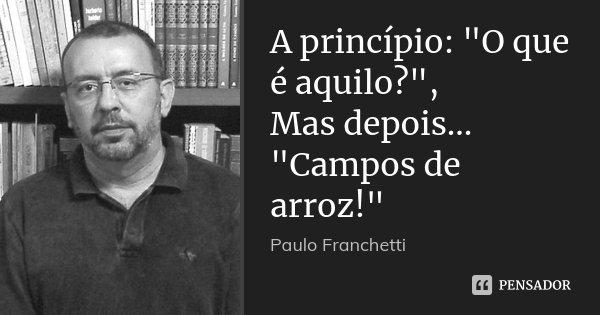 "A princípio: ""O que é aquilo?"", Mas depois... ""Campos de arroz!""... Frase de Paulo Franchetti."