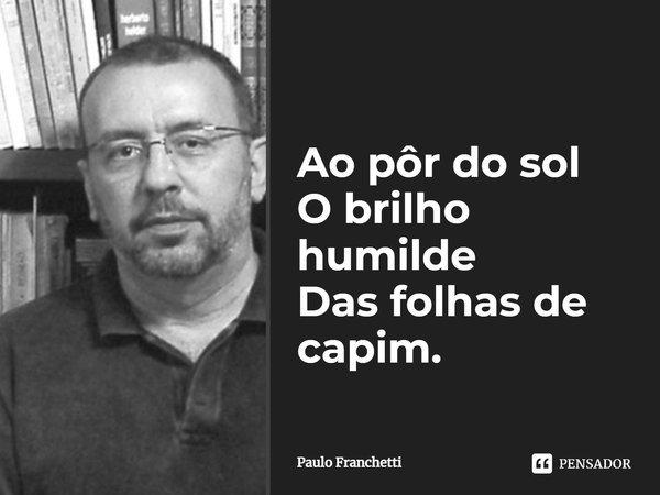Ao pôr-do-sol O brilho humilde Das folhas de capim.... Frase de Paulo Franchetti.