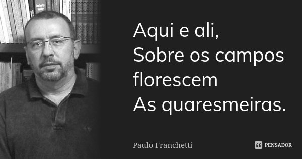 Aqui e ali, Sobre os campos florescem As quaresmeiras.... Frase de Paulo Franchetti.