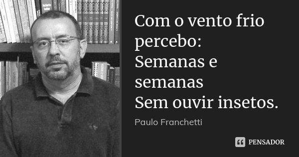 Com o vento frio percebo: Semanas e semanas Sem ouvir insetos.... Frase de Paulo Franchetti.