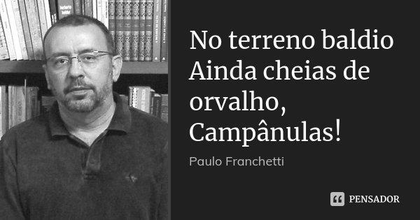 No terreno baldio Ainda cheias de orvalho, Campânulas!... Frase de Paulo Franchetti.