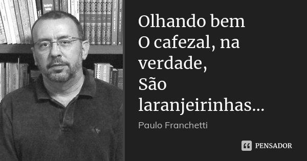 Olhando bem O cafezal, na verdade, São laranjeirinhas...... Frase de Paulo Franchetti.