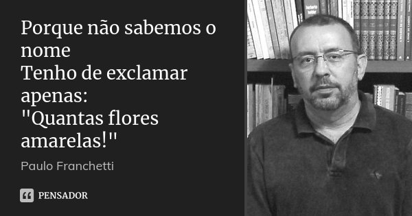 """Porque não sabemos o nome Tenho de exclamar apenas: """"Quantas flores amarelas!""""... Frase de Paulo Franchetti."""