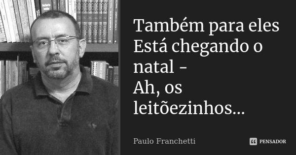 Também para eles Está chegando o natal - Ah, os leitõezinhos...... Frase de Paulo Franchetti.