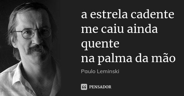 a estrela cadente me caiu ainda quente na palma da mão... Frase de Paulo Leminski.