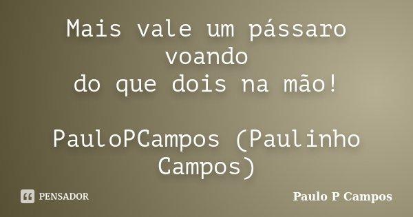 Mais vale um pássaro voando do que dois na mão! PauloPCampos (Paulinho Campos)... Frase de Paulo P Campos.