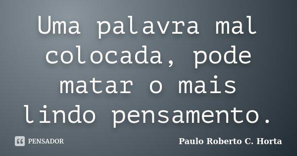 Uma palavra mal colocada, pode matar o mais lindo pensamento.... Frase de Paulo Roberto C.Horta.