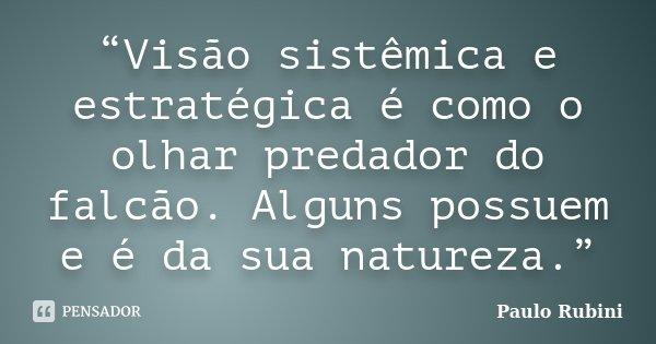 """""""Visão sistêmica e estratégica é como o olhar predador do falcão. Alguns possuem e é da sua natureza.""""... Frase de Paulo Rubini."""