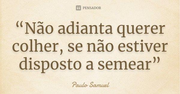"""""""Não adianta querer colher, se não estiver disposto a semear""""... Frase de Paulo Samuel."""