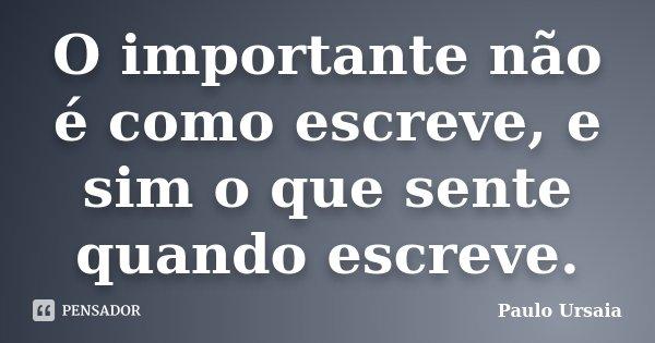 O importante não é como escreve, e sim o que sente quando escreve.... Frase de Paulo Ursaia.