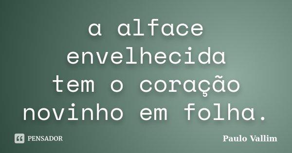 a alface envelhecida tem o coração novinho em folha.... Frase de Paulo Vallim.
