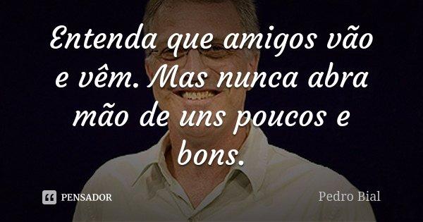 Entenda que amigos vão e vêm. Mas nunca abra mão de uns poucos e bons.... Frase de Pedro Bial.