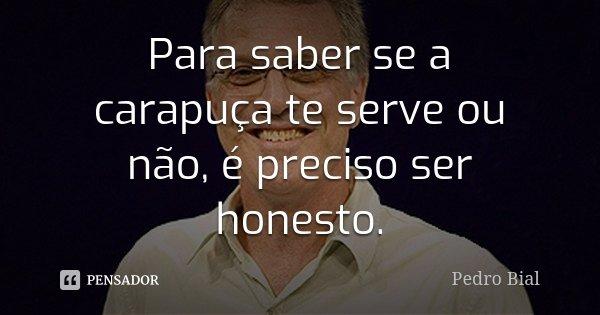 Para saber se a carapuça te serve ou não, é preciso ser honesto.... Frase de Pedro Bial.
