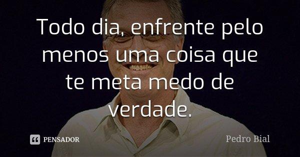 Todo dia, enfrente pelo menos uma coisa que te meta medo de verdade.... Frase de Pedro Bial.