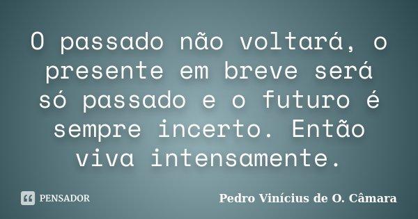 O passado não voltará, o presente em breve será só passado e o futuro é sempre incerto. Então viva intensamente.... Frase de Pedro Vinícius de O. Câmara.