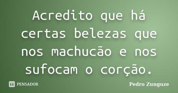 Acredito que há certas belezas que nos machucão e nos sufocam o corção.... Frase de Pedro Zunguze.