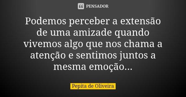 Podemos perceber a extensão de uma amizade quando vivemos algo que nos chama a atenção e sentimos juntos a mesma emoção...... Frase de Pepita de Oliveira.