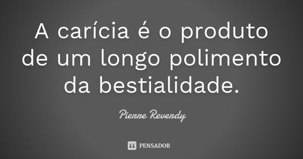 A carícia é o produto de um longo polimento da bestialidade.... Frase de Pierre Reverdy.