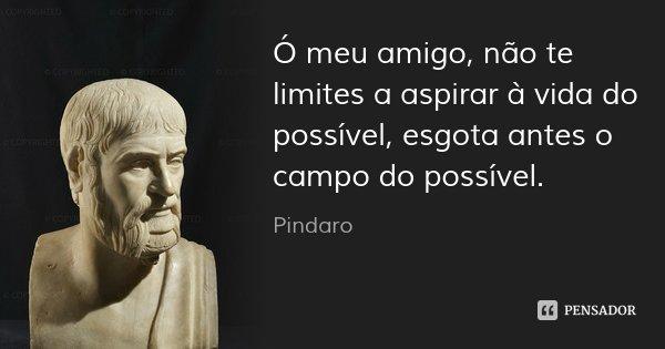 Ó meu amigo, não te limites a aspirar à vida do possível, esgota antes o campo do possível.... Frase de Pindaro.