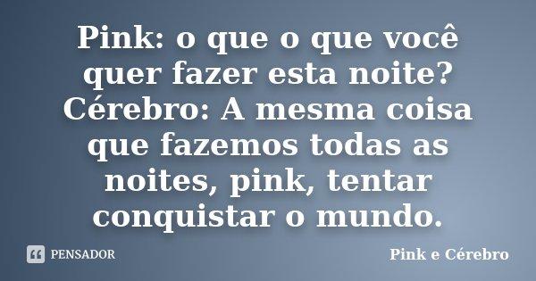 Pink O Que O Que Você Quer Fazer Esta Pink E Cérebro