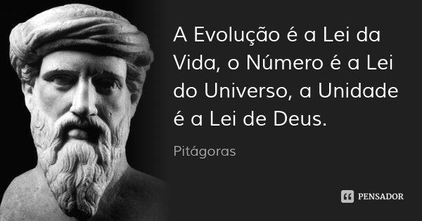A Evolução é a Lei da Vida, o Número é a Lei do Universo, a Unidade é a Lei de Deus.... Frase de Pitágoras.