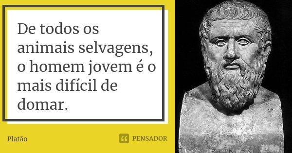 De todos os animais selvagens, o homem jovem é o mais difícil de domar.... Frase de Platão.