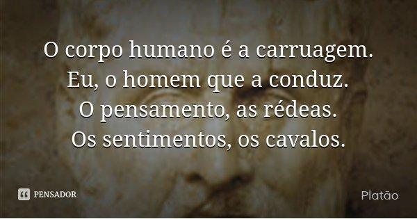 O corpo humano é a carruagem. Eu, o homem que a conduz. O pensamento, as rédeas. Os sentimentos, os cavalos.... Frase de Platão.