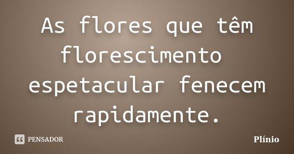 As flores que têm florescimento espetacular fenecem rapidamente.... Frase de Plínio.